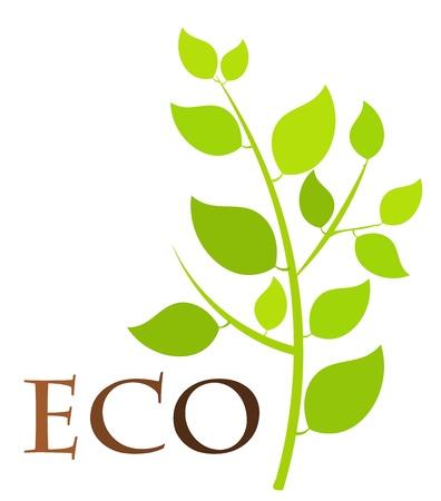 Green eco plant - vector illustration Stock Vector - 13196554