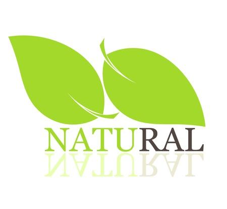 bio food: Leaves natural symbol.