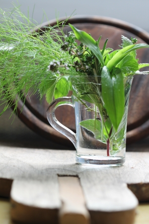 water thyme: Fresh herbs in glass. Vintage style Stock Photo