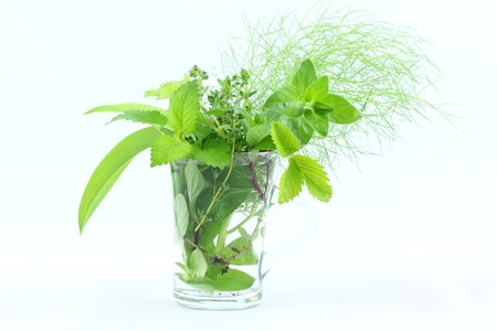 water thyme: Fresh herbs in glass Stock Photo