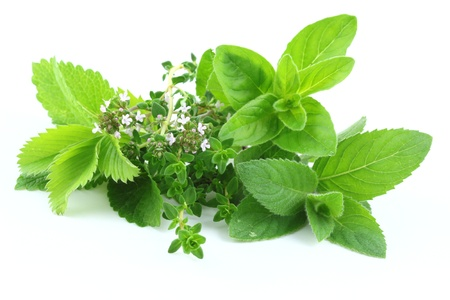 balm: Fresh green herbs isolated over white Stock Photo