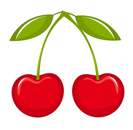 Two cherries with leaves. Vector illustration Vector