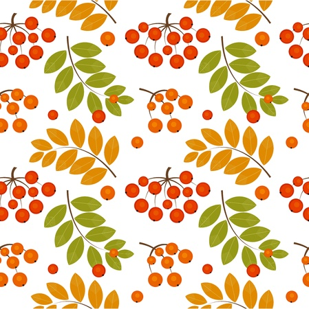 mountain ash: Ash berry seamless pattern. Vector illustration