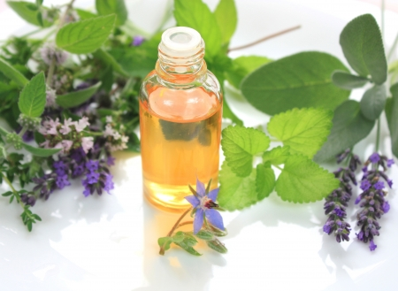 Fresh herbs and oil in bottle - spa aromatherapy