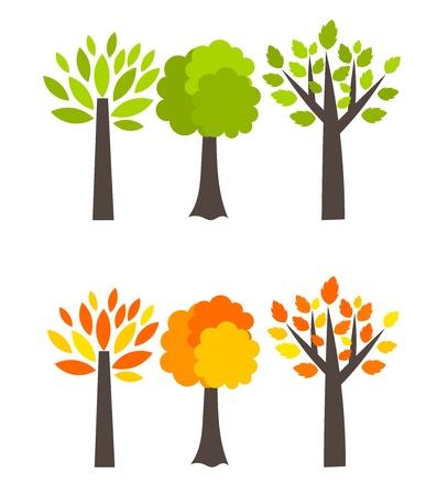 Arbres saisons - Le printemps et l'automne