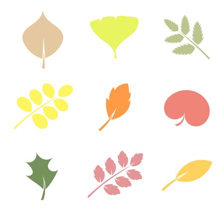 Vaus shapes of leaves Stock Vector - 15809725