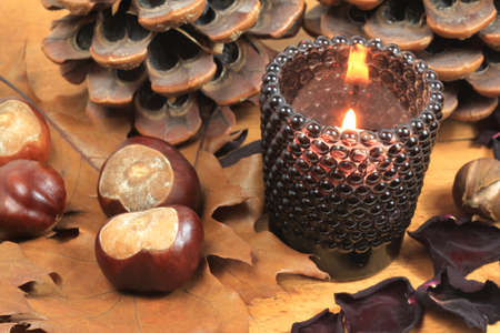 Autumn candle, leaves and chestnuts. Brown colors photo