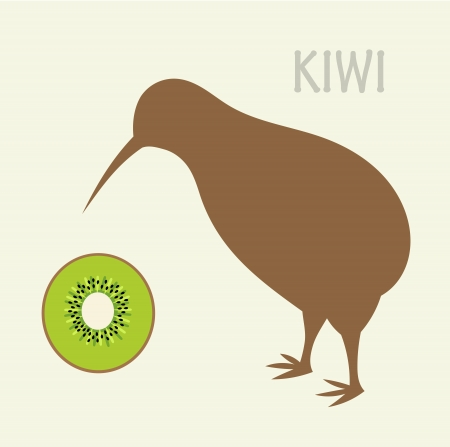 Kiwi aves y fruta kiwi - símbolos de Nueva Zelanda