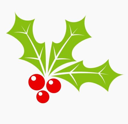 muerdago: Baya del acebo - navidad s�mbolo Vectores