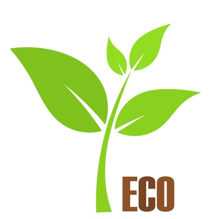 Green young plant. Eco symbol