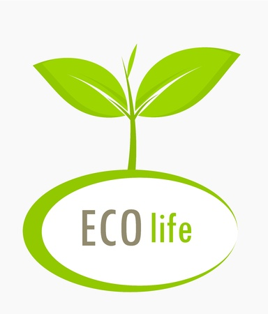 New born growing plant - ecological concept Stock Vector - 17389776