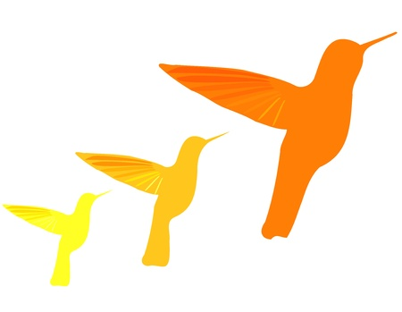 Orange hummingbirds silhouettes isolated over white. Vector Vector
