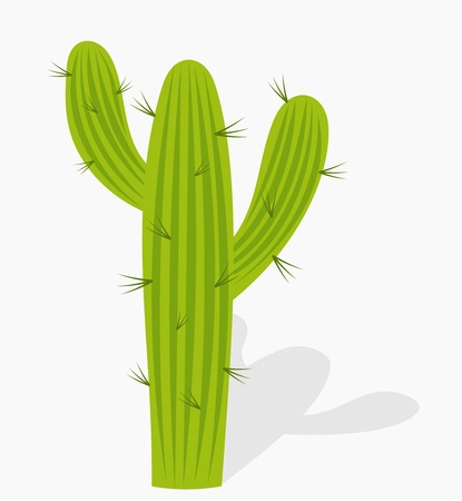Cactus - illustration Stock Vector - 17519714
