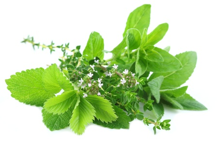 balm: Fresh herbs bouquet isolated on white background