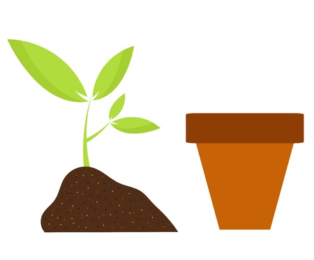Planting flower in pot. Gardening vector illustration Stock Vector - 18466342