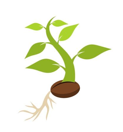 Pasgeboren installatie het groeien uit zaad. Vector illustratie Vector Illustratie