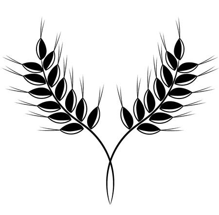 wheat grass: Grain ears - black vector illustration