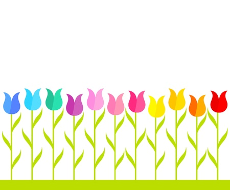 Row of multicolor tulip flowers. Vector illustration Stock Vector - 18545012