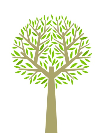 Tree illustration on white background. Vector Vector