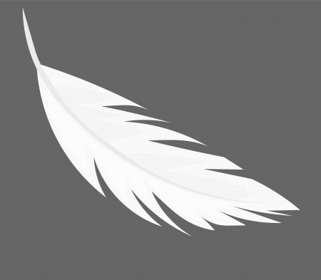 falling feather: Feather - illustration