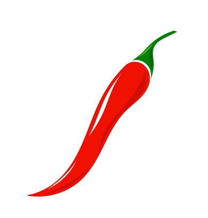 Chilli pepper. Vector illustration Vector