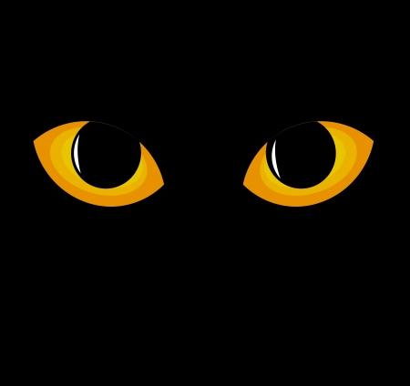 Wild black cat eyes in darkness. Vector illustration Vector