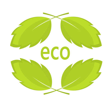 Eco leaves. Natural vector illustration concept Vector