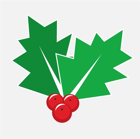 aquifolium: Christmas card decoration - isolated holly berry symbol or icon
