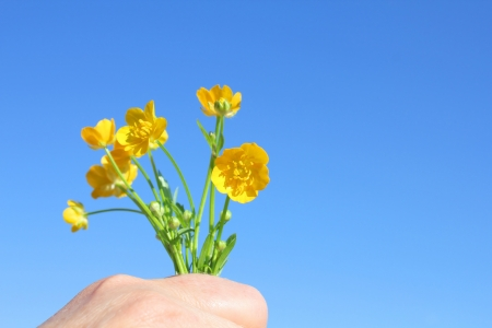 Bouquet of yellow flowers in hand over blue sky. photo