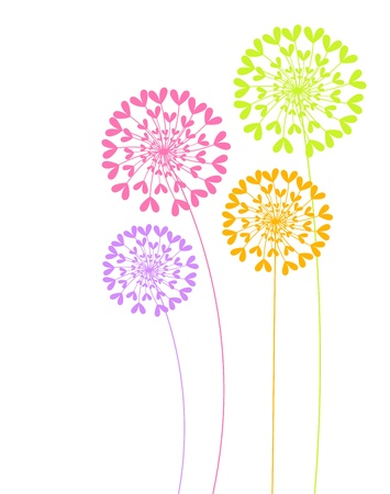 Colorful dandelion flowers illustration