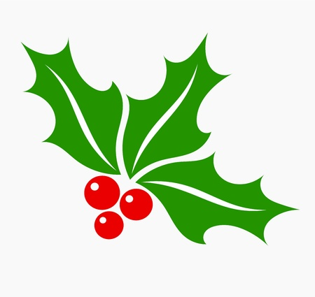 Holly berry leaves and fruits, Christmas symbol Vector