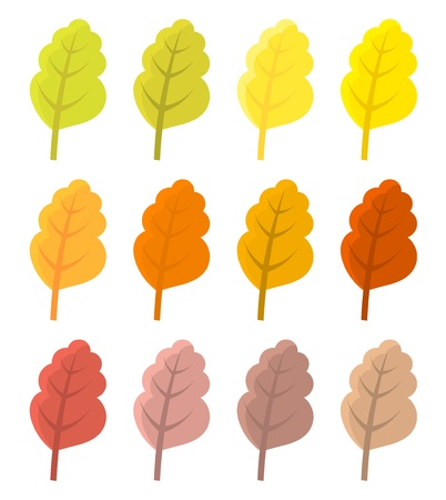 fallen: Autumn leaves - various colors collection. Vector illustration