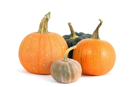 Group of various pumpkins isolated on white photo