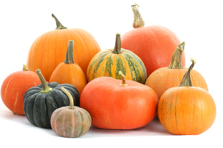 Pumpkins family. Group of fruits isolated on white Imagens