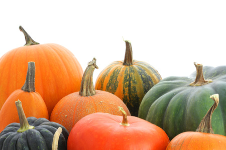 Pumpkins family. Group of fruits isolated on white background photo