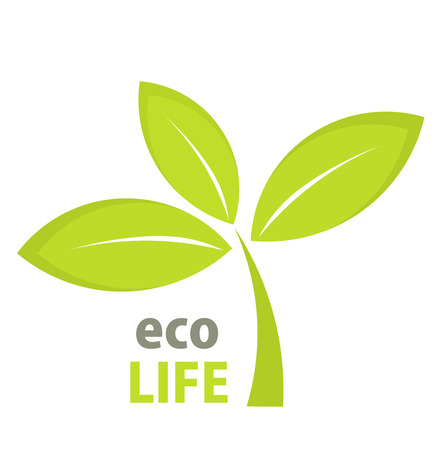 Eco life green leaf symbol. Vector illustration Vector