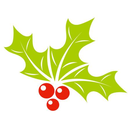 houx: Houx symbole baie d'usine de No�l. Vector illustration Illustration