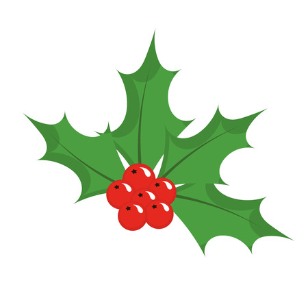 holly berry: Christmas icon holly berry. Vector illustration