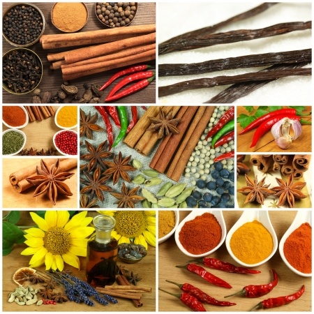 Various spices in collage composition photo