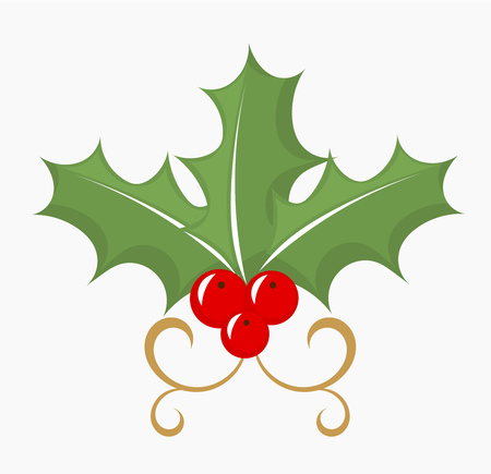 Holly berry - three leaves and red fruits. Vector illustration Vector