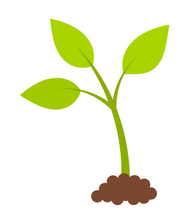 sprout growth: Newborn green plant. Spring symbol. Illustration