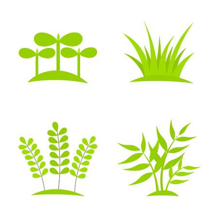 Green plants growing collection.  Illustration