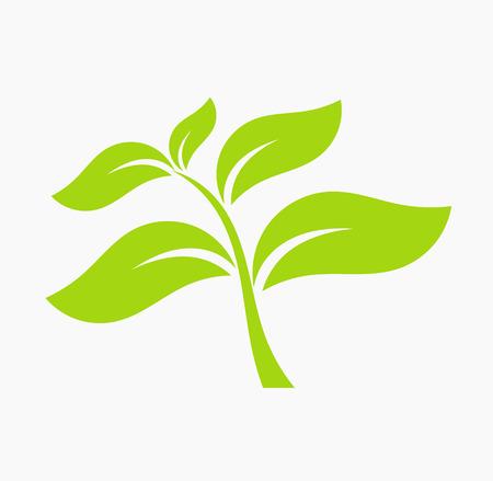 organic spa: Green leaf icon. Vector illustration