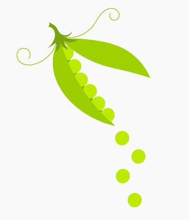 Green peas pod.