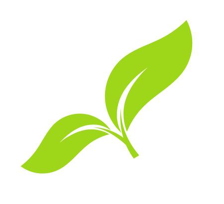 germinate: Green leaf eco icon.
