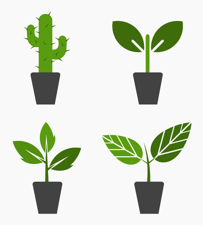 Plants in pots icons. Vector