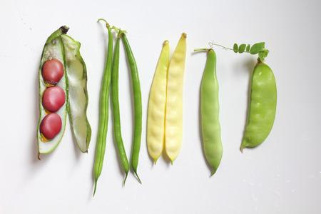 leguminosas: Diferentes tipos de legumbres: judías verdes y amarillos, guisantes, habas Foto de archivo