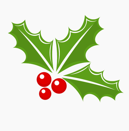 aquifolium: Christmas holly berry symbol. Vector illustration Illustration
