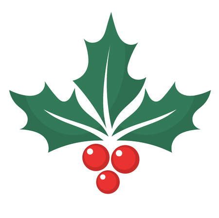 Holly berry. Vector illustration