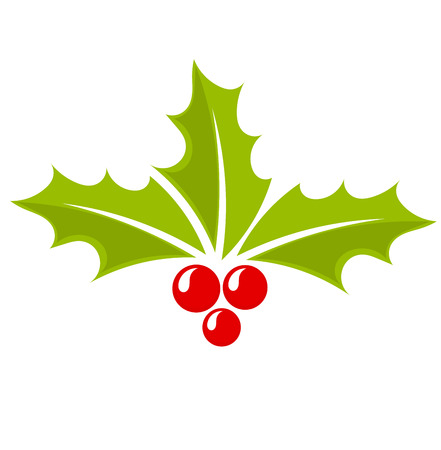 holly berry: Christmas icon holly berry symbol. Vector illustration